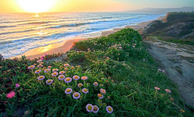 Sunrise, courtesy of Steve Jurvetson
