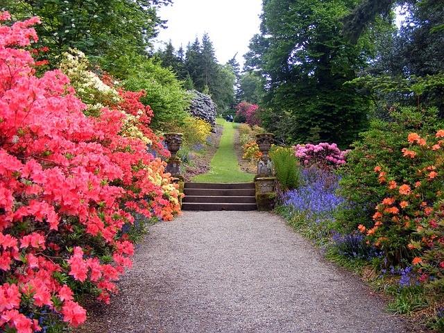 garden-470704_640 (2)