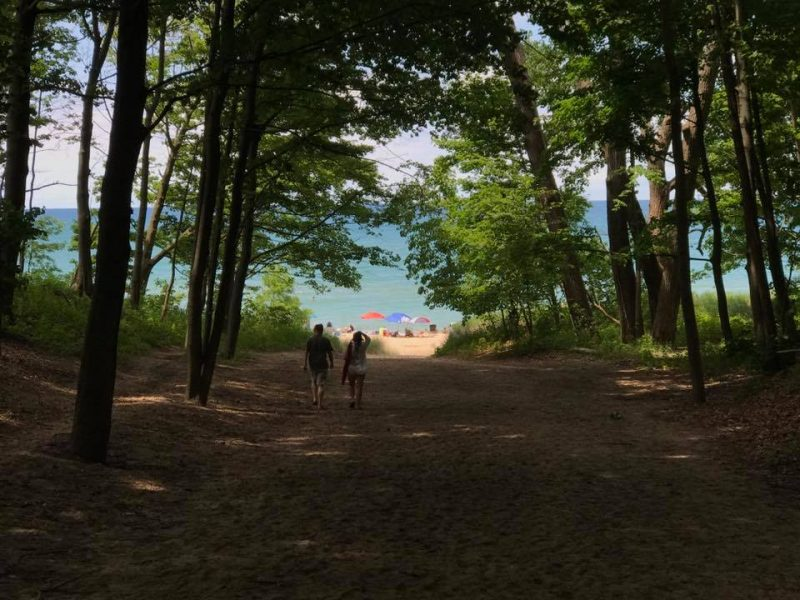 Walk through the trees to the beach at Union Pier