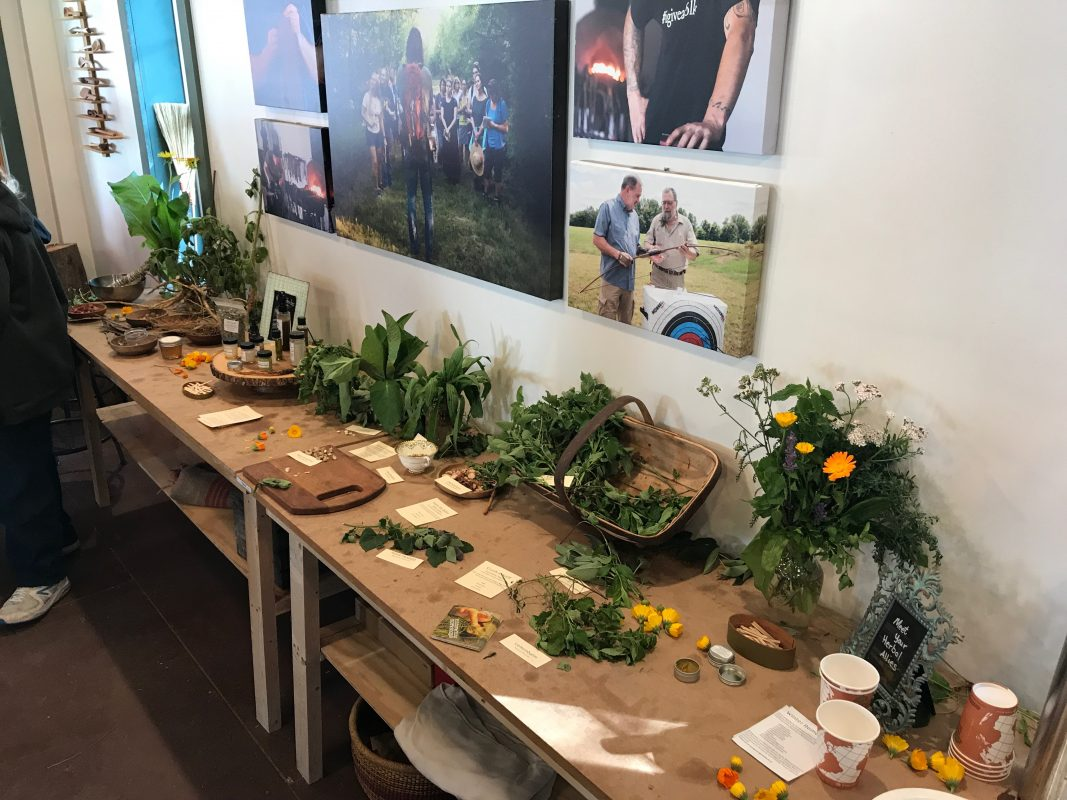 medicinal and edible plants on a table with pictures of folk school classes in the background