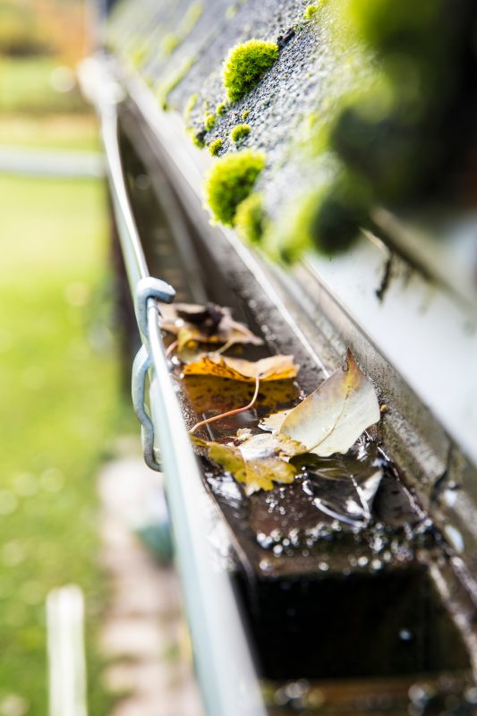 gutter cleaning is important